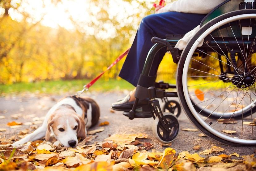 Disability Lawyer Bonita Springs